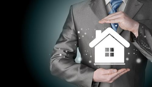 What is a Domestic Asset…